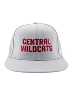 Gray Nike Central Wildcats Hat
