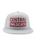 Gray Nike CENTRAL WILDCATS Snapback Hat