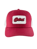 Classic Nike Trucker with Central Patch Hat