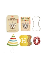 Mini Dog Birthday Kit
